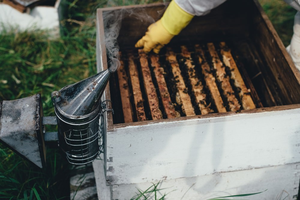 hive with smoker