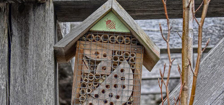best mason bee house